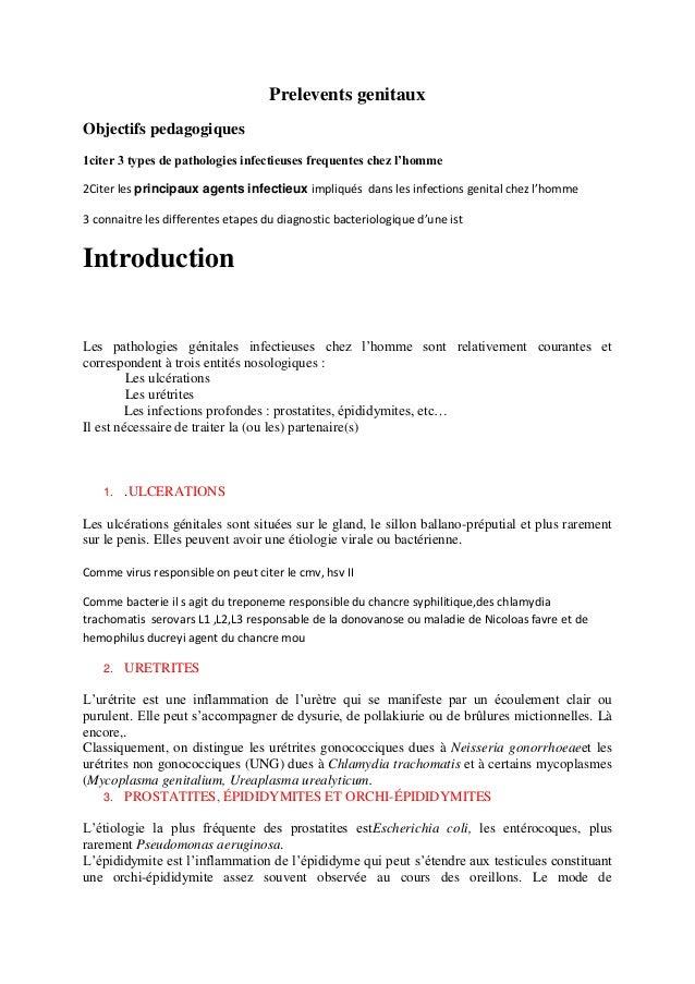 Prelevents genitaux Objectifs pedagogiques 1citer 3 types de pathologies infectieuses frequentes chez l'homme 2Citer les p...