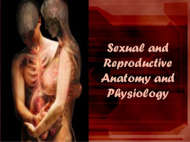 Sexual and Reproductive Anatomy and Physiology