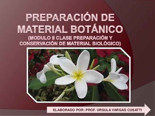 Preparación y Conservación de Material Botánico