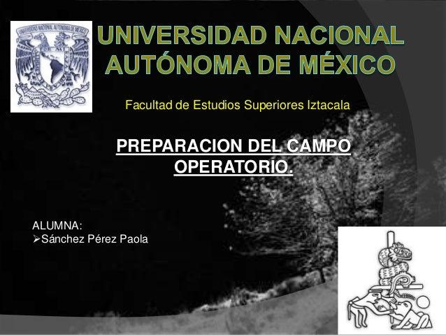 Facultad de Estudios Superiores Iztacala              PREPARACION DEL CAMPO                   OPERATORIO.ALUMNA:Sánchez P...
