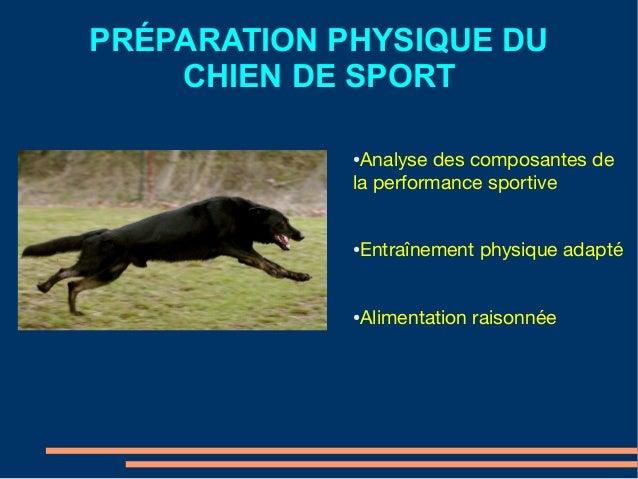 PRÉPARATION PHYSIQUE DU CHIEN DE SPORT ● Analyse des composantes de la performance sportive ● Entraînement physique adapté...