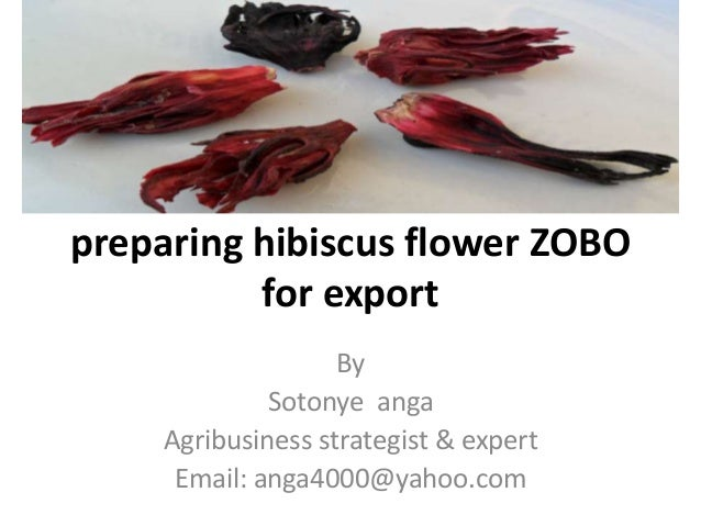 preparing hibiscus flower ZOBO          for export                   By             Sotonye anga    Agribusiness strategis...
