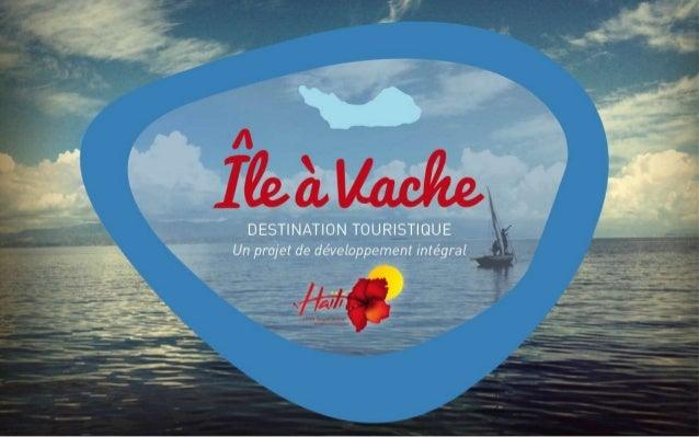 PROJET ILE-A-VACHE / Presentation de la Ministre en Conseil de Gouvernement / 19-02-14