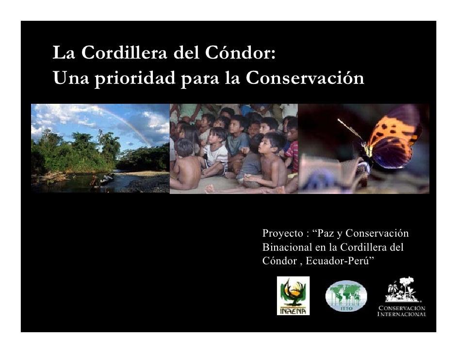 """La Cordillera del Cóndor: Una prioridad para la Conservación                           Proyecto : """"Paz y Conservación     ..."""