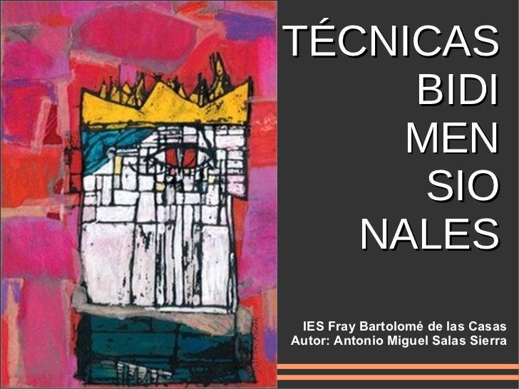 TÉCNICAS BIDI MEN SIO NALES IES Fray Bartolomé de las Casas Autor: Antonio Miguel Salas Sierra