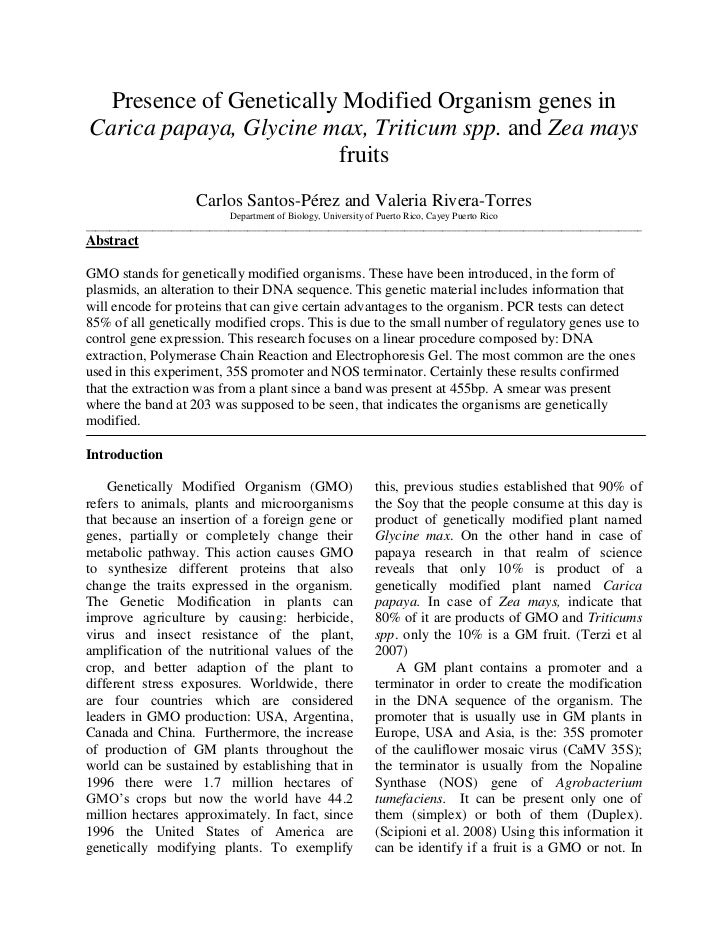 Presence of genetically modified organism genes in carica papaya, glycine max, triticum spp. and zea mays fruits