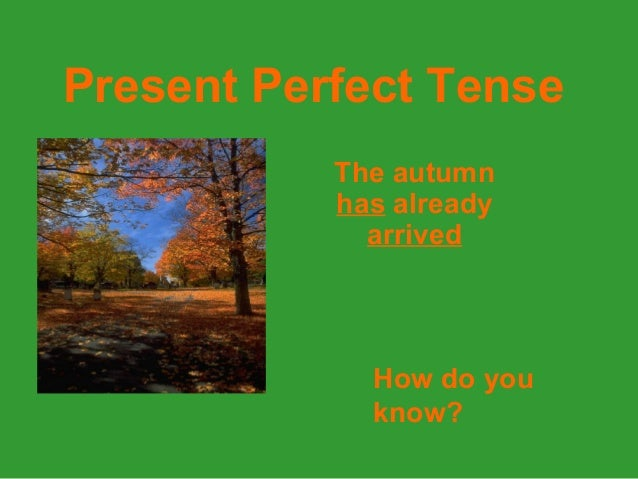 Present Perfect TenseThe autumnhas alreadyarrivedHow do youknow?