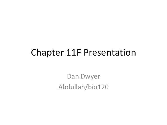 Present11