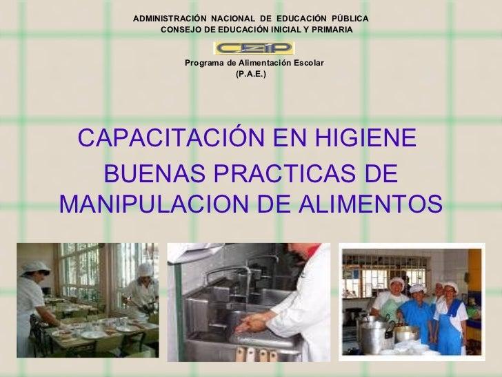 ADMINISTRACIÓN  NACIONAL  DE  EDUCACIÓN  PÚBLICA CONSEJO DE EDUCACIÓN INICIAL Y PRIMARIA Programa de Alimentación Escolar ...