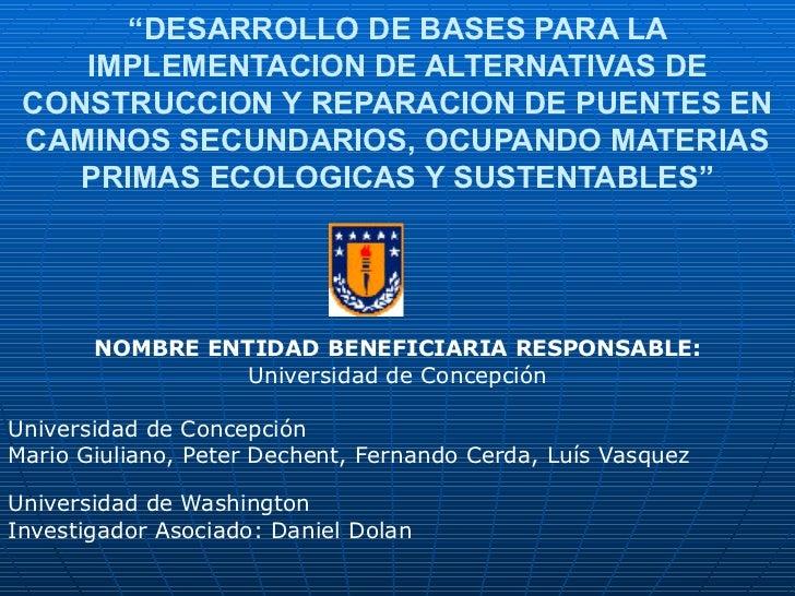 """"""" DESARROLLO DE BASES PARA LA IMPLEMENTACION DE ALTERNATIVAS DE CONSTRUCCION Y REPARACION DE PUENTES EN CAMINOS SECUNDARIO..."""