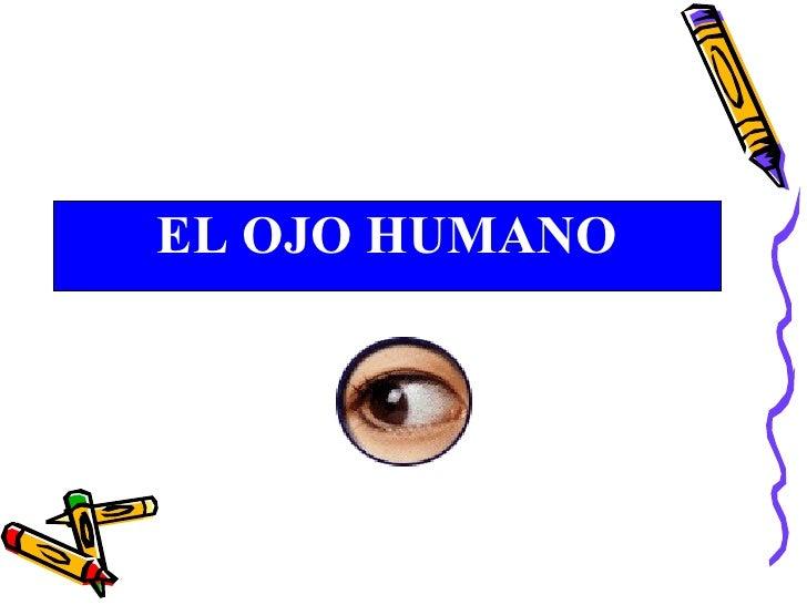 <ul><li>EL OJO HUMANO </li></ul>