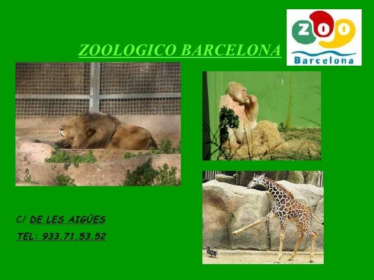 ZOOLOGICO BARCELONA C/  DE LES AIGÜES TEL: 933.71.53.52
