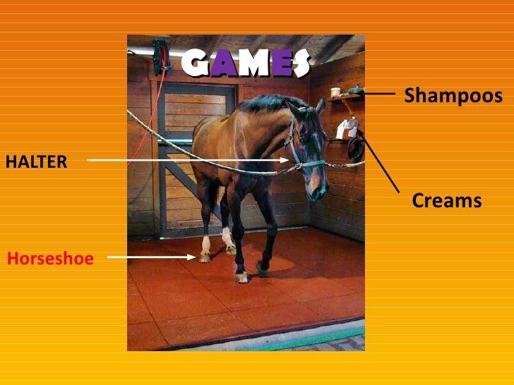 GAMES                    ShampoosHALTER                    CreamsHorseshoe