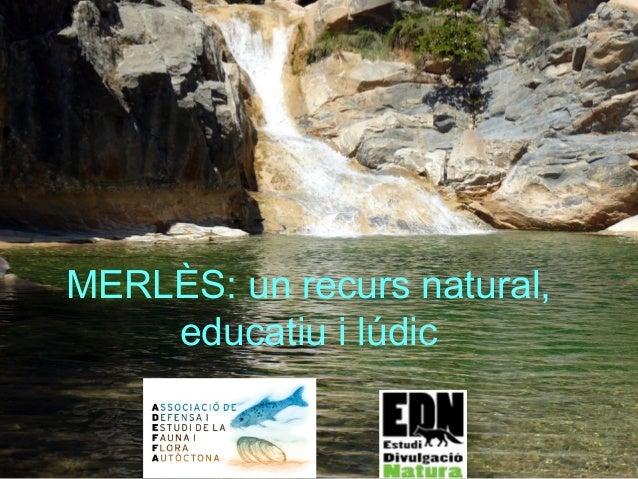 MERLÈS: un recurs natural, educatiu i lúdic