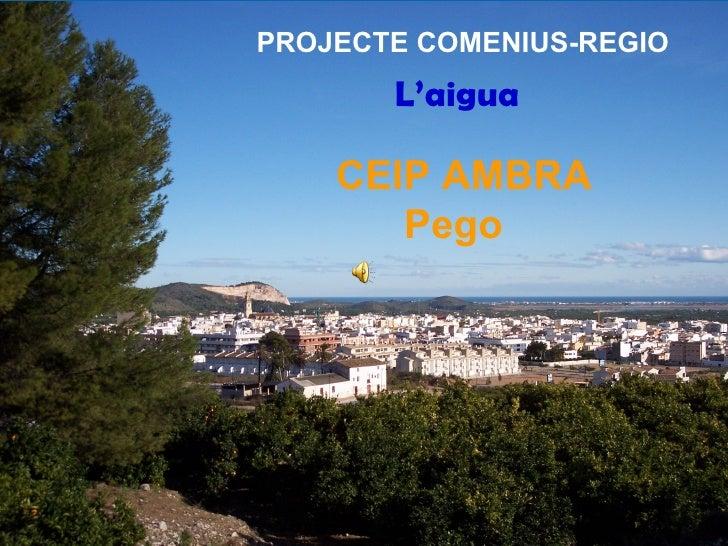 PROJECTE COMENIUS-REGIO          L'aigua    CEIP AMBRA    L' Pego     L'