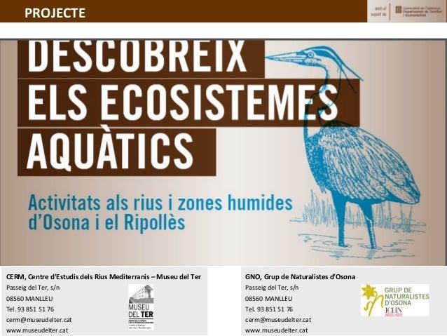 Descobreix els ecosistemes aquàtics d'Osona i Ripollès