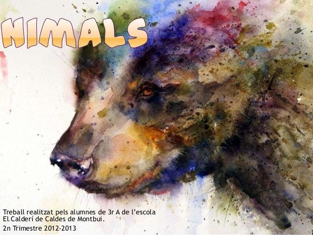 Treball realitzat pels alumnes de 3r A de l'escolaEl Calderí de Caldes de Montbui.2n Trimestre 2012-2013