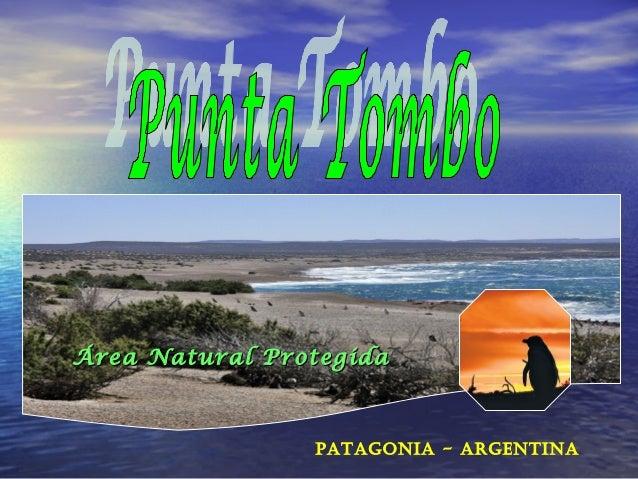 Área Natural Protegida  Patagonia - argentina