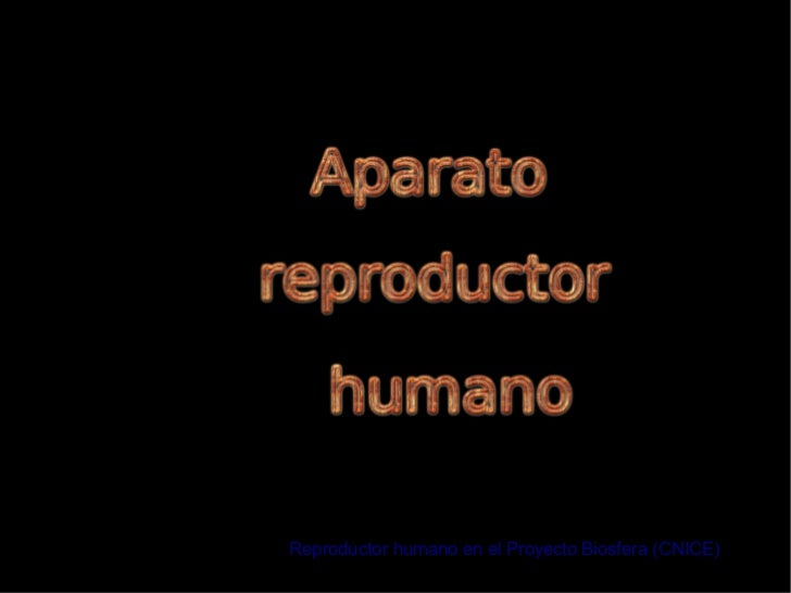Reproductor humano en el Proyecto Biosfera (CNICE)