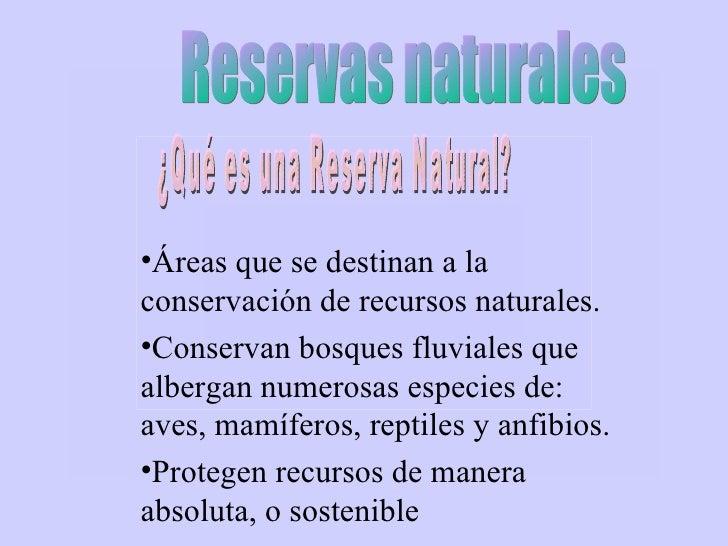 <ul><li>Áreas que se destinan a la conservación de recursos naturales. </li></ul><ul><li>Conservan bosques fluviales que a...