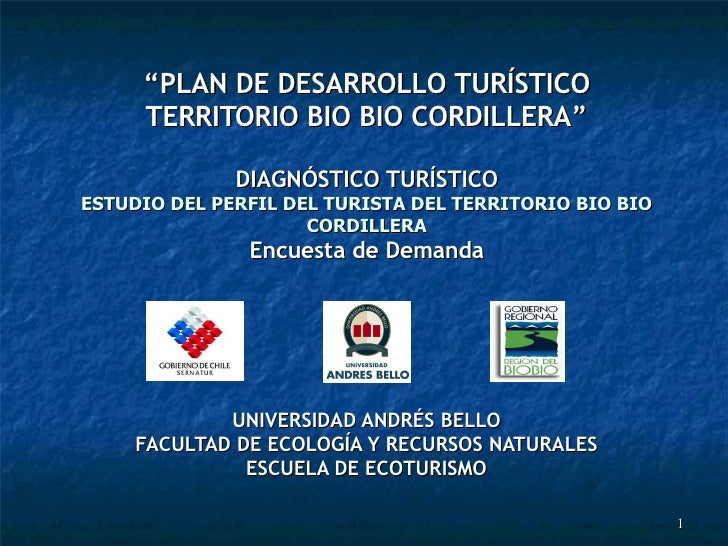PresentacióN Estudio Demanda Tucapel