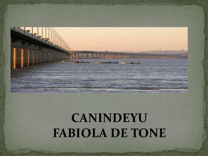 CANINDEYUFABIOLA DE TONE