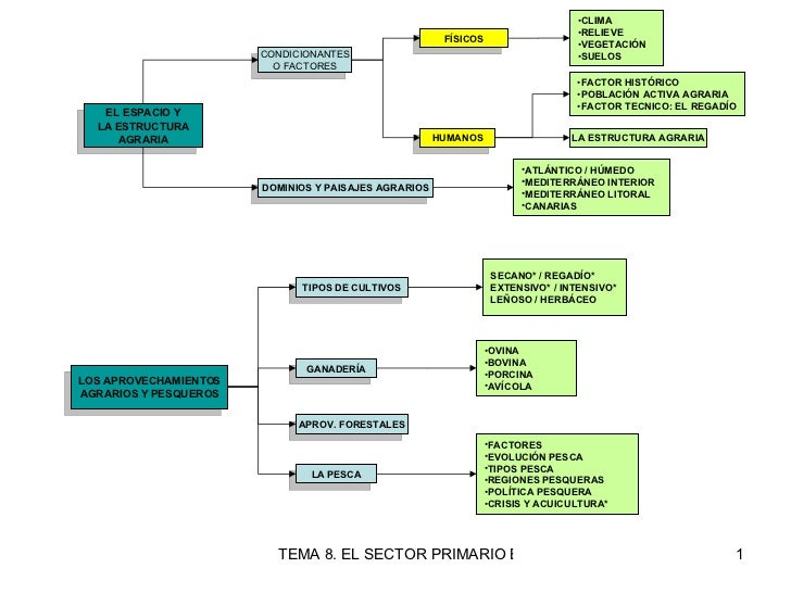 EL ESPACIO Y LA ESTRUCTURA AGRARIA CONDICIONANTES O FACTORES FÍSICOS <ul><li>CLIMA </li></ul><ul><li>RELIEVE </li></ul><ul...