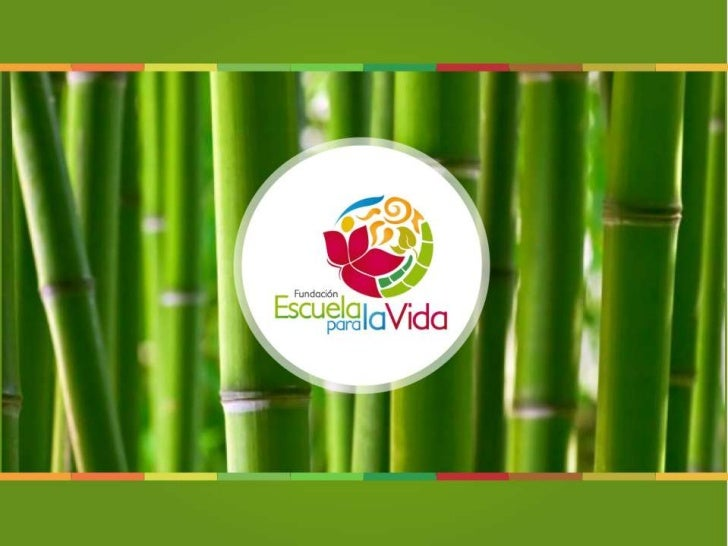 Festival Viva Guadua 2013
