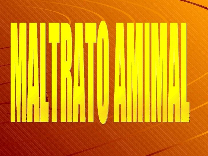 MALTRATO AMIMAL