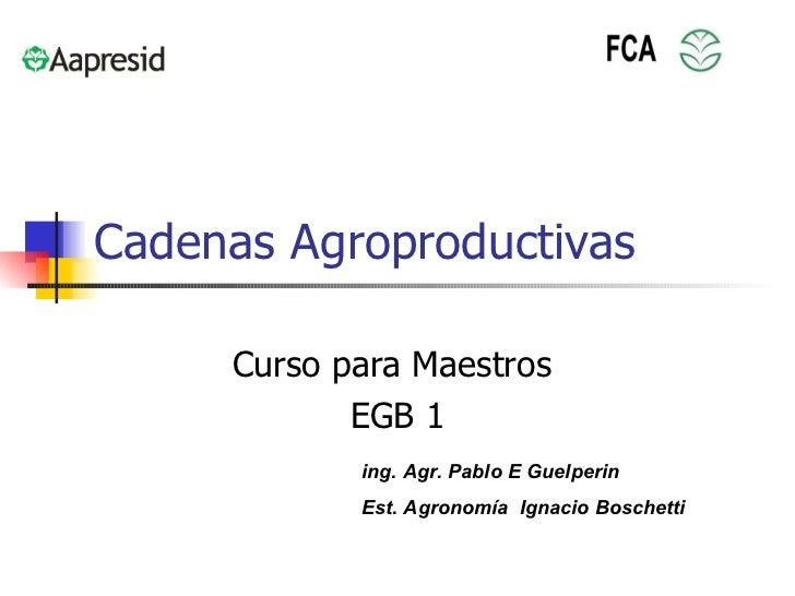 Que es una Cadenas Agroproductivas