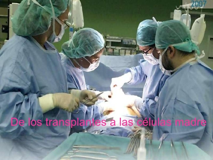 De los transplantes a las células madre