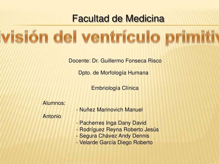 Facultad de Medicina<br />División del ventrículo primitivo<br />Docente: Dr. Guillermo Fonseca Risco<br />Dpto. de Morfol...