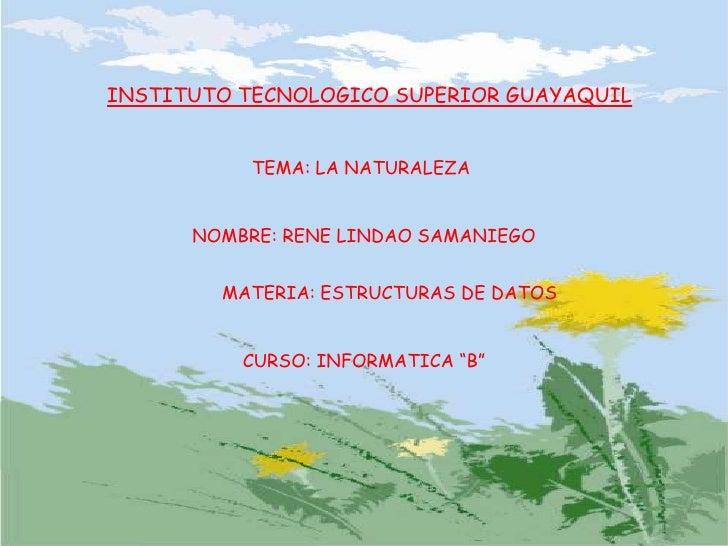 INSTITUTO TECNOLOGICO SUPERIOR GUAYAQUIL<br />TEMA: LA NATURALEZA<br />NOMBRE: RENE LINDAO SAMANIEGO<br />MATERIA: ESTRUCT...