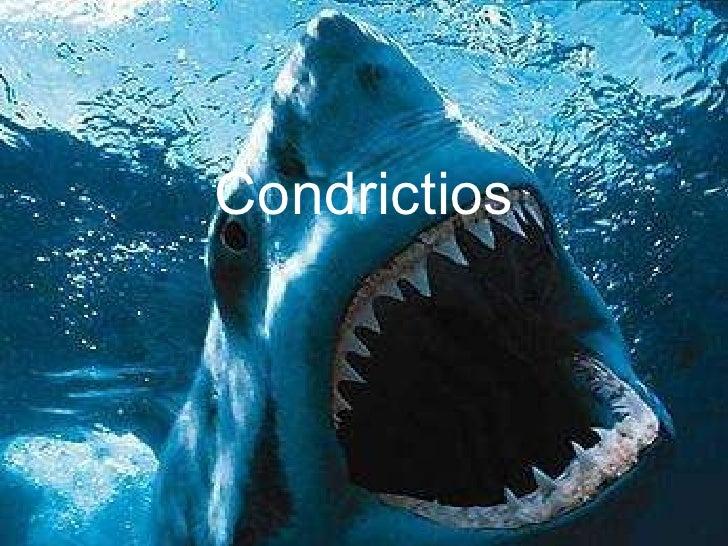 Condrictios