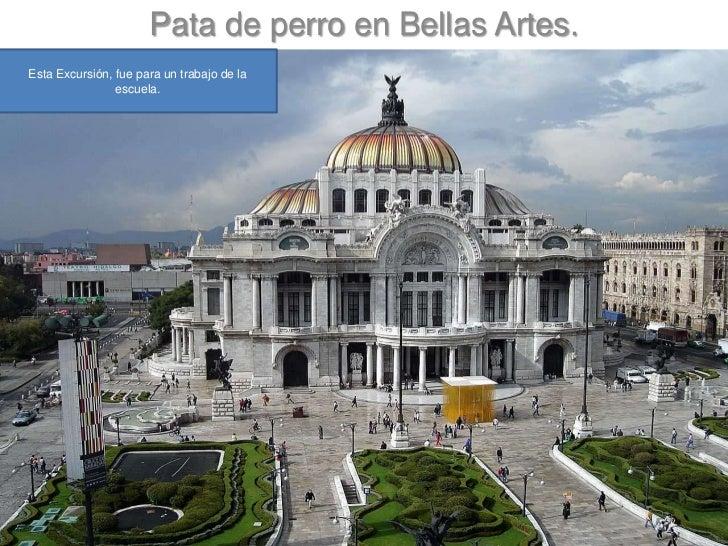 Pata de perro en Bellas Artes.<br />Esta Excursión, fue para un trabajo de la escuela.<br />