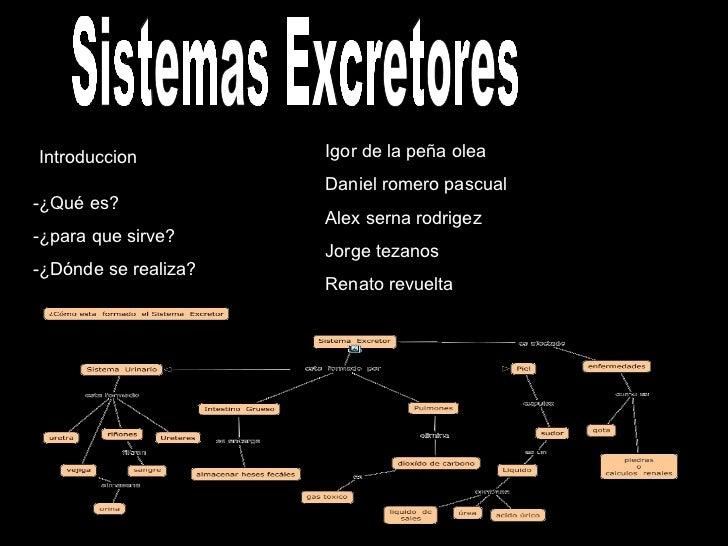 Sistemas Excretores Introduccion -¿Qué es? -¿para que sirve? -¿Dónde se realiza? Igor de la peña olea Daniel romero pascua...