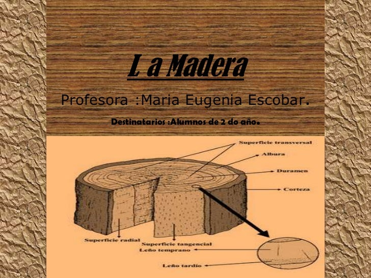L a MaderaProfesora :Maria Eugenia Escobar.Destinatarios :Alumnos de 2 do año.<br />