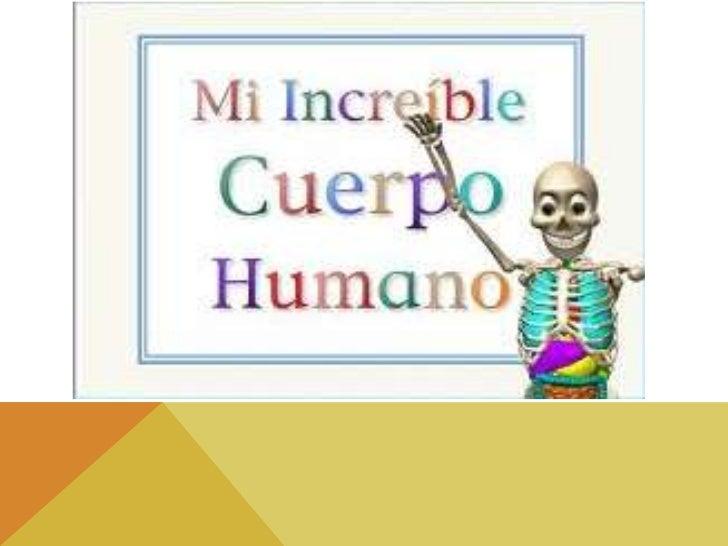 El cuerpo humano es el masimportante y siempre estaen investigación yestudio, ya que nos ayudaa realizar todas lasfuncione...