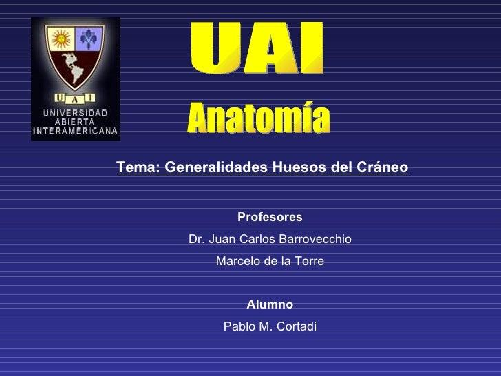 UAI Anatomía Tema: Generalidades Huesos del Cráneo Profesores Dr. Juan Carlos Barrovecchio Marcelo de la Torre Alumno Pabl...