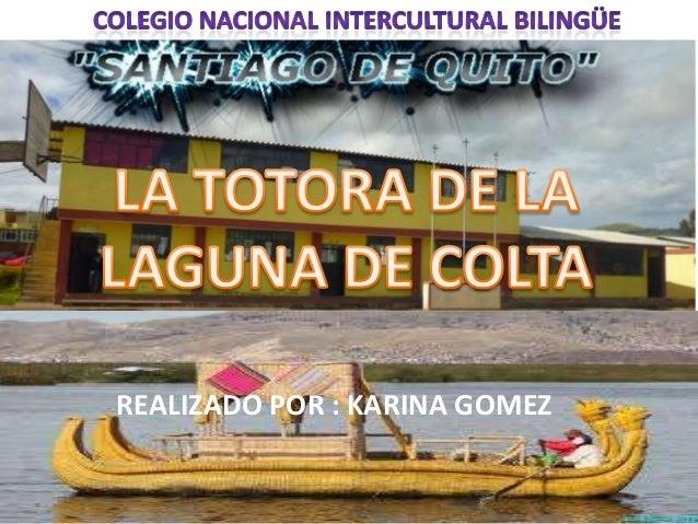 REALIZADO POR : KARINA GOMEZ