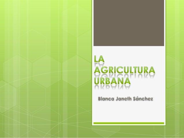 ¿Que  es la agricultura urbana ? Que plantas medicinales se cultivan en Bogotá Como se construye una huerta escolar Q...