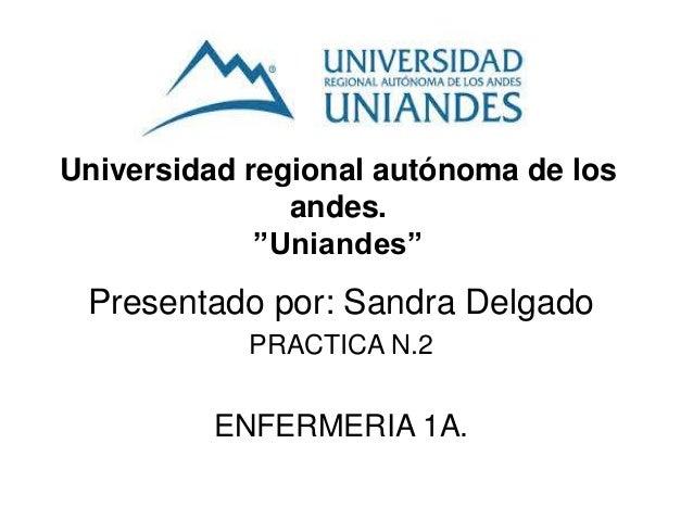 """Universidad regional autónoma de los andes. """"Uniandes"""" Presentado por: Sandra Delgado PRACTICA N.2 ENFERMERIA 1A."""