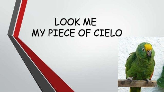 LOOK ME MY PIECE OF CIELO