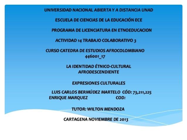 Presentación catedra de estudios afrocolombianos curso 446001_17