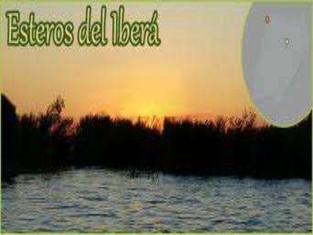 Vengo de lejos, amigos míos, aquí mi seña les voy a dar, vengo de lejos, soy de Corrientes, soy forastero del Íbera...