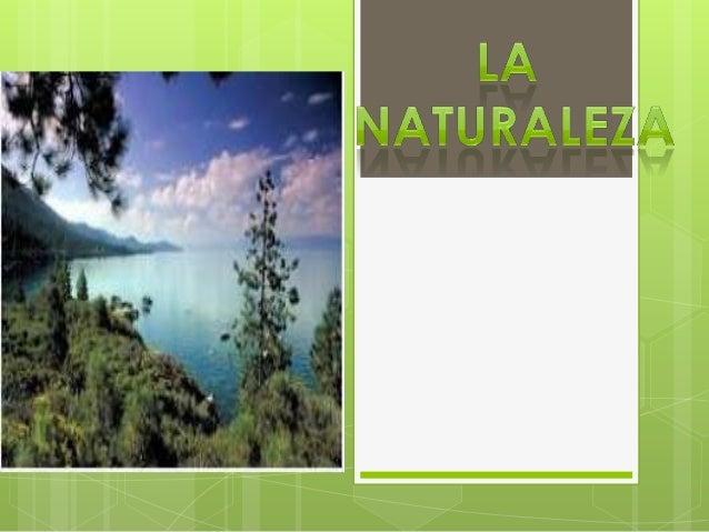 La naturaleza , en su sentido más amplio, es equivalente al mundo natural, mundo material o universo material. El término ...