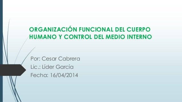 ORGANIZACIÓN FUNCIONAL DEL CUERPO HUMANO Y CONTROL DEL MEDIO INTERNO Por: Cesar Cabrera Lic.: Líder García Fecha: 16/04/20...