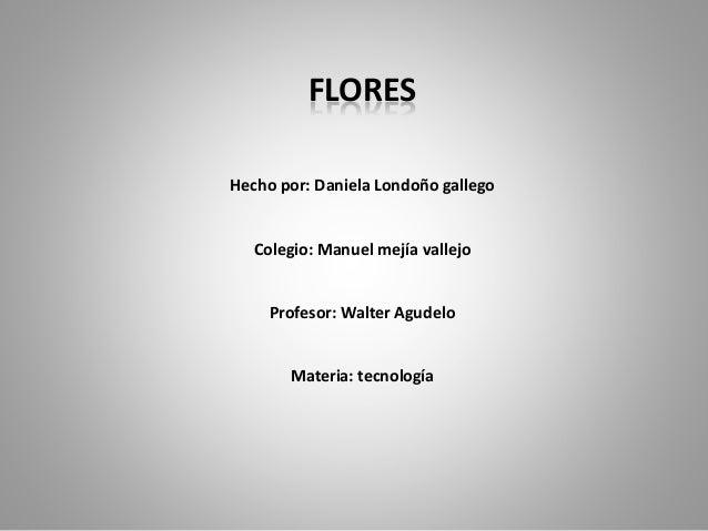 FLORES  Hecho por: Daniela Londoño gallego  Colegio: Manuel mejía vallejo  Profesor: Walter Agudelo  Materia: tecnología