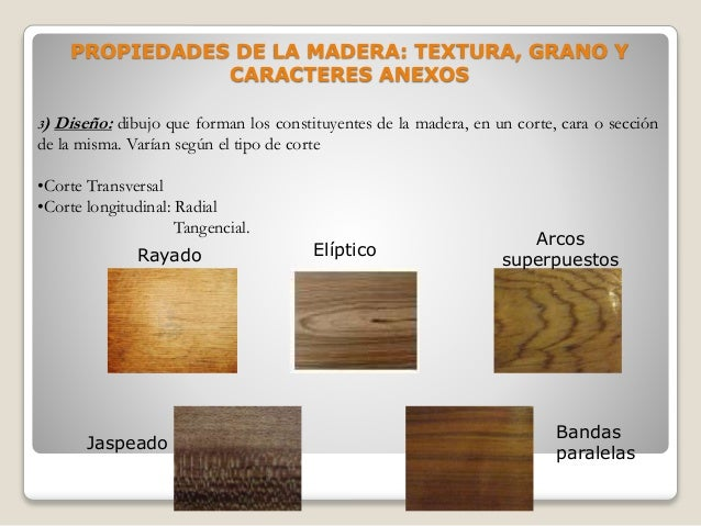 Xilotecnologia o tecnolog a de maderas for La veta de la madera