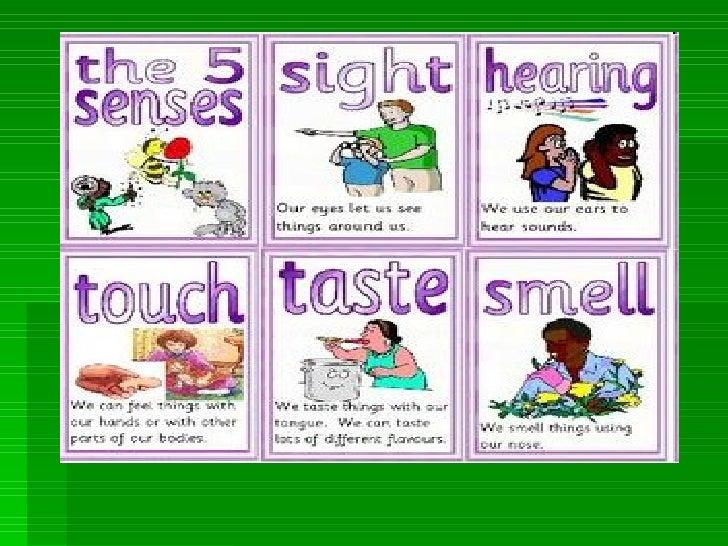 Presentación1.ppt senses